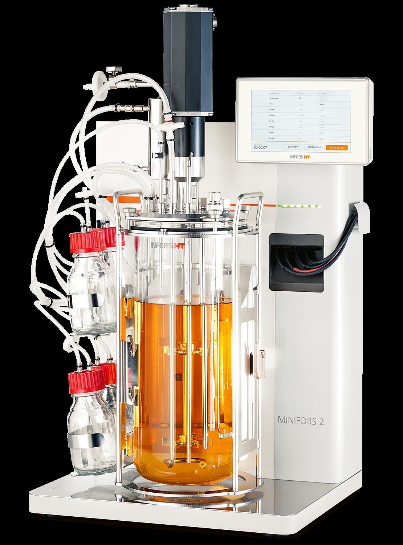 Minifors 2 biorreactor Pichia pastoris