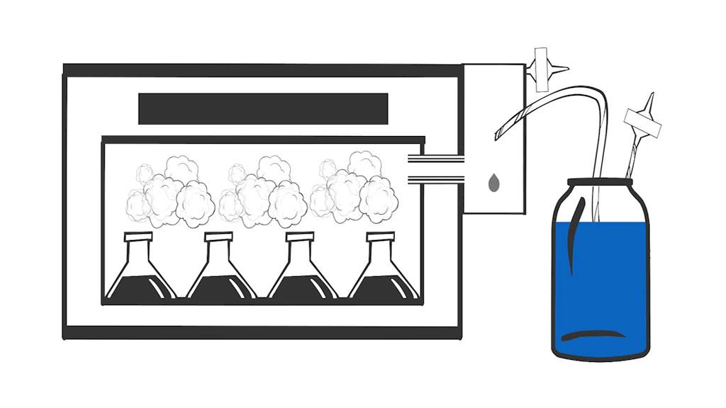 Bidirectional humidification system