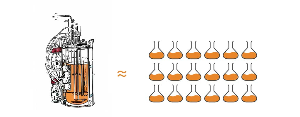 Comparing a bench top bioreactor with shake flasks